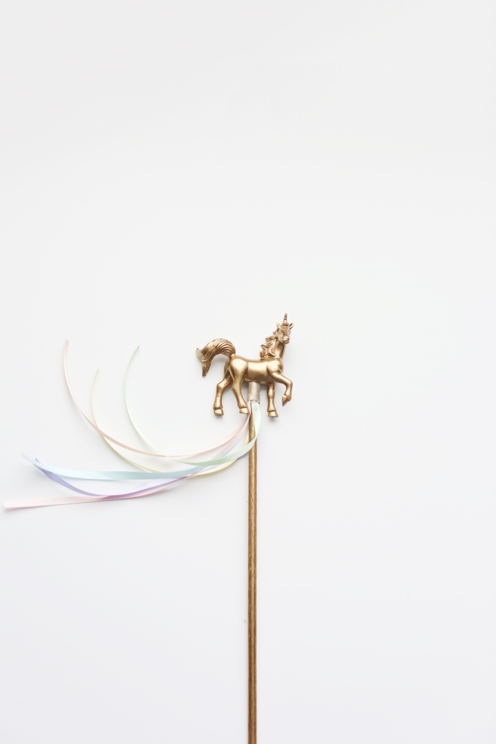 unicornparty02