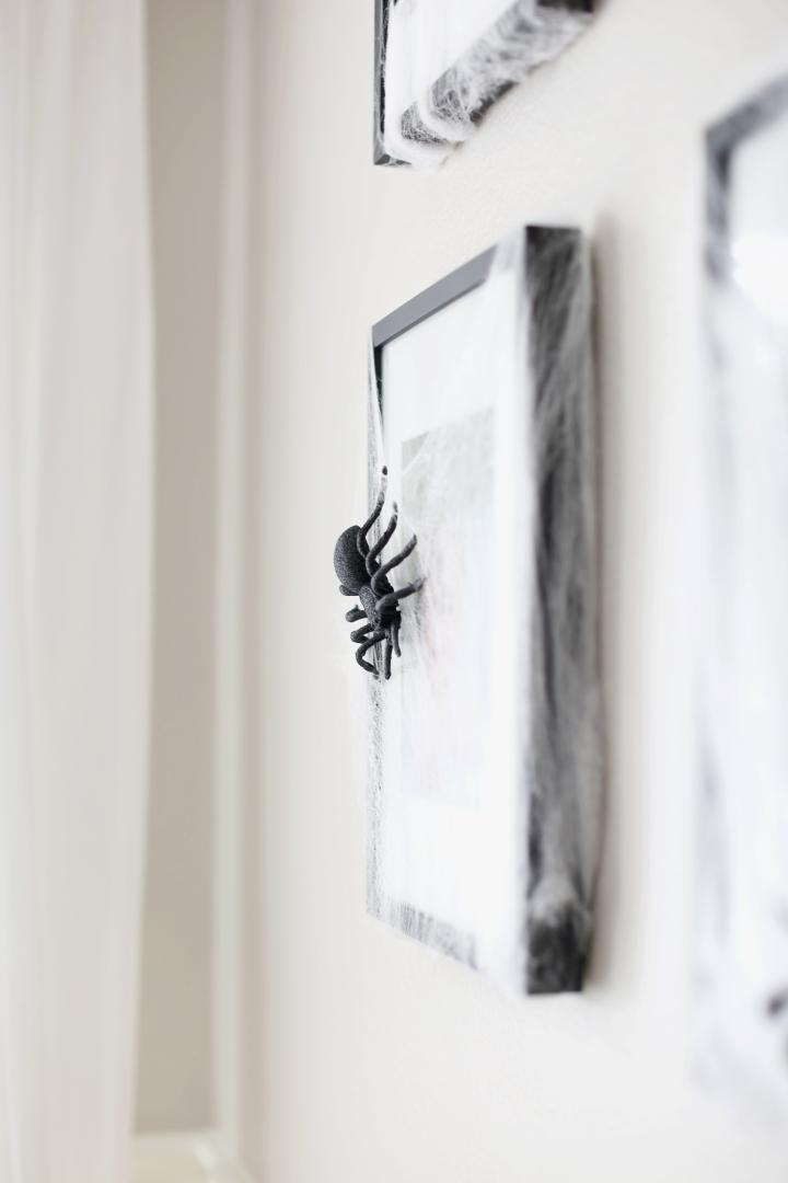spiderwall04